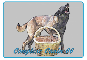 Complexe canin